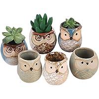6Pcs/Set Ceramic Owl Pot Succulent Plant Cactus Flower Pot Container Planter Bonsai Pots