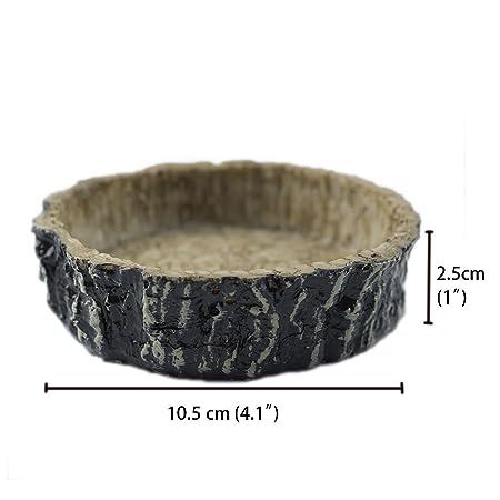 omem bol alimentos y agua plato resina natural hecho de piel de serpiente: Amazon.es: Productos para mascotas