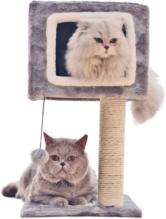 QNMM Cuadro de Escalada para Gatos Centro de Actividades para ...