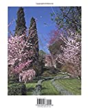 Ninfa: The Most Romantic Garden in the World by Charles Quest-Ritson front cover