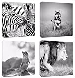 4Pcs 12x12 Canvas Wood Stretched Animal Zebra Husky Squirrel Lion Black and White Theme Pink Frame Landscape Abstract Modern Art For Home Room Office Wall Print Decor 12x12'' inch (30x30cm)