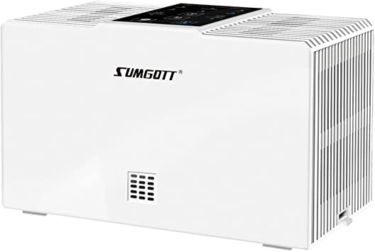 SUMGOTT Purificador de Aire, Filtro HEPA con 3 Etapas de ...