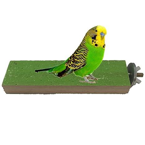Perch Plataforma de madera Bird Parrot Macaw africana Greys ...