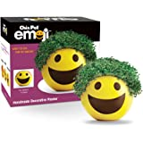 Chia Emoji Smiley Handmade Decorative Planter, Yellow
