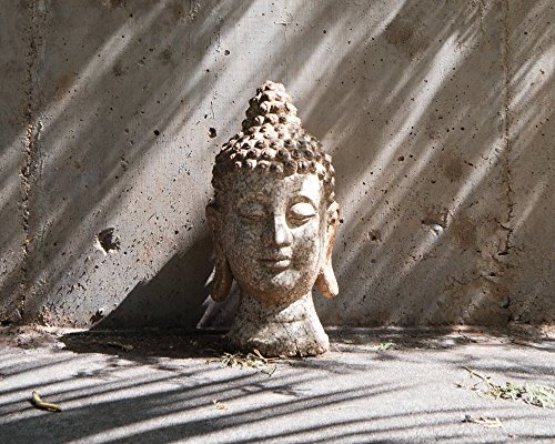 Calm Buddha Statue Picture, Yoga Zen Decor Print (Photographic Prints Unmatted)