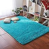 Softlife Super Soft Velvet Area Rugs, Fashion Color Modern Shaggy Carpet Nursery Cute Rug for Bedroom Girls Room Home Decor 4 x 5.3 Feet,Blue