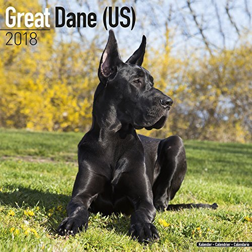 Great Dane Calendar 2018 - Dog Breed Calendar - Premium Wall Calendar 2017-2018