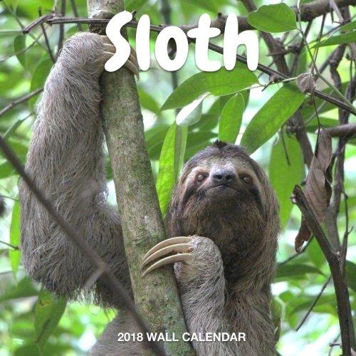 Sloth 2018 Wall Calendar: Sloth Photography, 8.5 x 8.5, Mini Calendar, Wall Calendar (New Years Gift Idea) (Animal Calendars) PDF