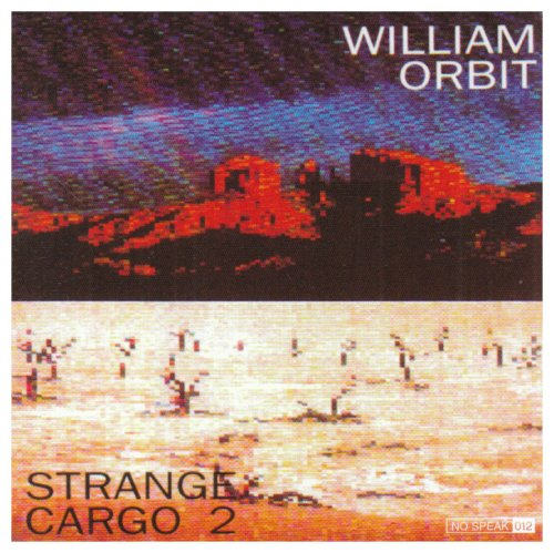 Αποτέλεσμα εικόνας για STRANGE CARGO II-William Orbitt vinyl cover