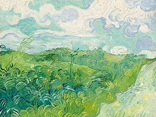 Posterazzi Collection Green Wheat Fields Auvers Poster Print by Van Gogh Vincent (14 x 11)