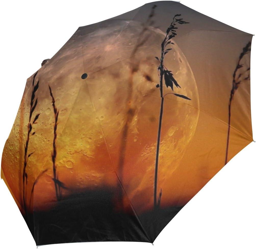DOENR Compact Travel Umbrella Artistic Earth Sun and Rain Auto Open Close Umbrellas Lightweight Portable Outdoor Folding Umbrella