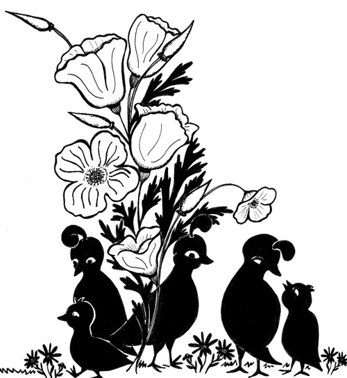The Big MotherGoose.com Coloring Book: Coloring Pages
