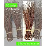 150-Birch-twigs-3-bundles-white-birch-branches-CenterpiecesThin-birch-branchesbirch-branches-for-decoration-Decorative-branches-3x50pcs-bundles
