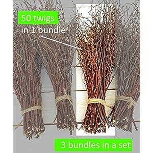 150 Birch twigs - 3 bundles. white birch branches, Centerpieces.Thin birch branches.birch branches for decoration, Decorative branches (3x50pcs bundles) 4