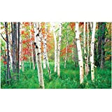 Biggies- Window Well Scenes Wall Art- Woods, 60'' x 100''