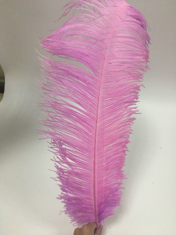 MELADY Pack of 50pcs 23~25inches Natural Ostrich Feathers Perfect for Home Wedding Party Decoration (Lavender)