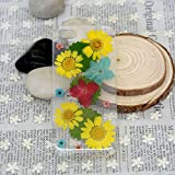 img - for SSummer Yellow Daisy and Red and Blue Hydrangea and Green Leaf Handmade Real Dried Pressed Flowers Case for iPhone 4 / 4s, iPhone 5 / 5s / 5c, iPhone 6 4.7 / iPhone 6 Plus 5.5 book / textbook / text book