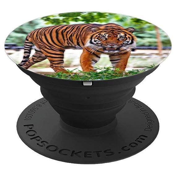 Amazon com: Roaming Tiger Popsocket - PopSockets Grip and