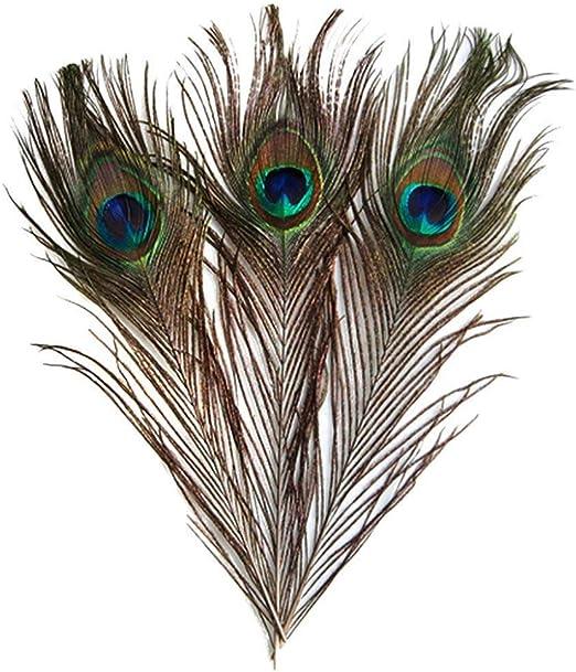 Ogquaton Plumas de Pavo Real Naturales Hermosas Plumas de Cola de ...