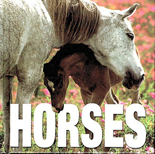 Horses by Gabriele Boiselle (2005) Hardcover by VMB Publishers