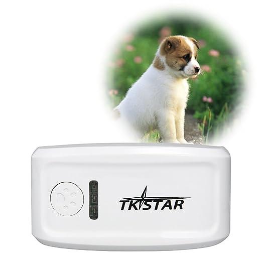 83 opinioni per Collare Localizzatore Portatile Gps Tracker Animali Domestici Cane Gatto PS013