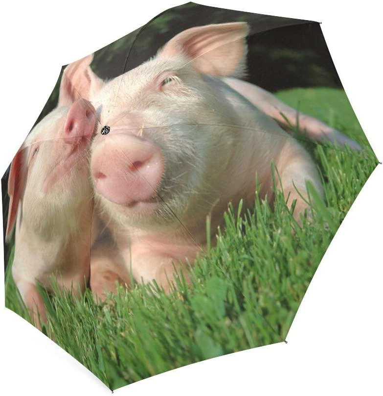 Pig in Play Ground with Grass Folding Rain Umbrella Parasol Windproof Travel Sun Umbrella Compact