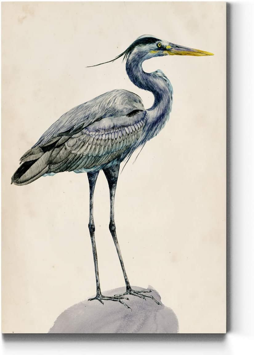 Neutral Color Wall Art, Wall Décor Canvas, Beaches, Floral, Animals, Southwestern, & Vintage Styles, Ready to Hang -Blue Heron I 24X36