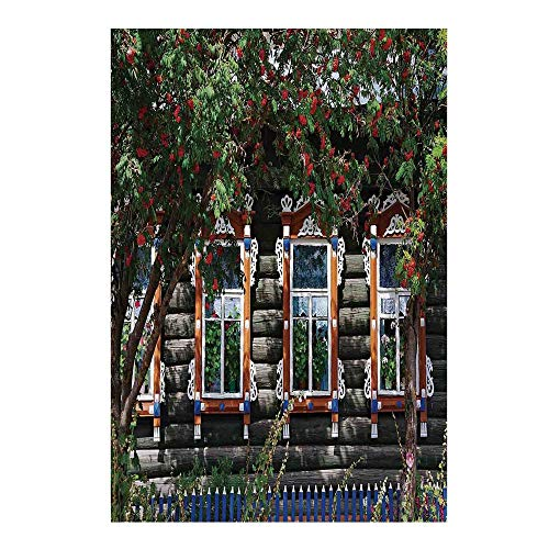 Shutters Stylish Backdrop,Wooden House with Shutter at Windows Fence Flower Trees Blooms Dream Art for Photography,39