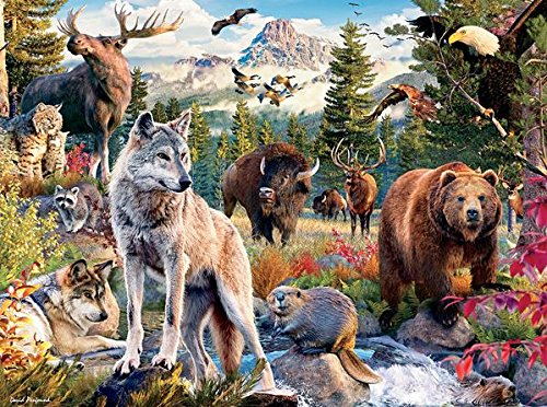 Puzzle Animal Wild - Ceaco Wild - American Animals 1000 Piece Puzzle