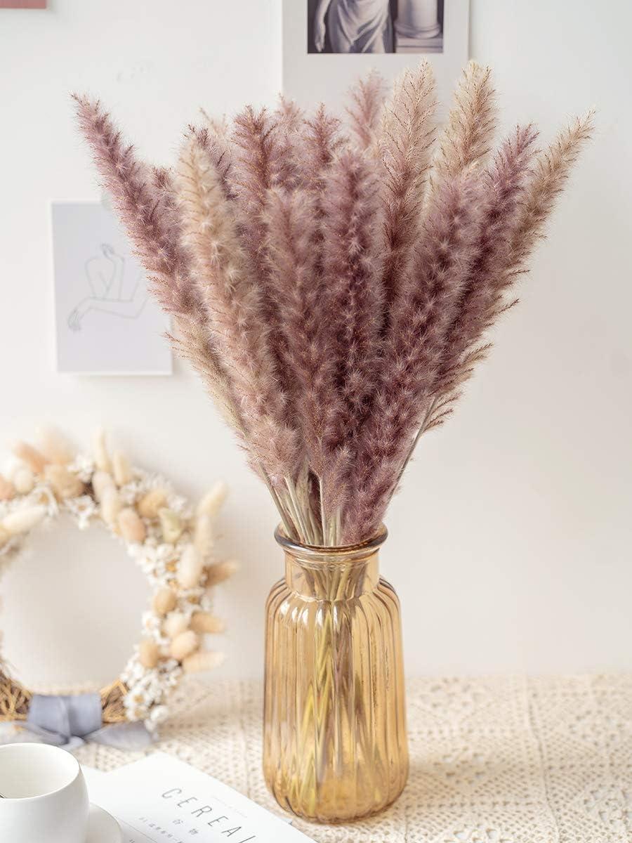 Birchio 30 Stems Natural Dried Pampas Grass for Home Decor, Flower Arrangement, Boho Decor (Natural)