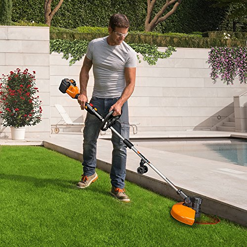 Worx WG184 Cordless Grass in-Line Feed, 1 Charger, 2 Batteries