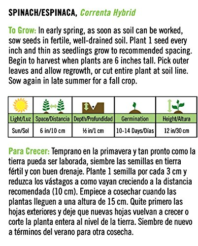 Amazon.com : Correnta Hybrid Spinach/Espinaca - Spanish/English : Garden & Outdoor