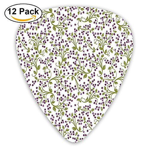 Newfood Ss Floral Pattern Of Wild Berries Ornamental Curvy Branches Foliage Fruits Botanic Guitar Picks 12/Pack ()