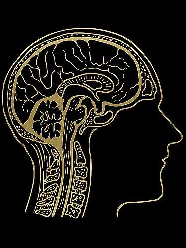 Amazon Doctors Office Anatomy Brain Wall Art Metal Stencil
