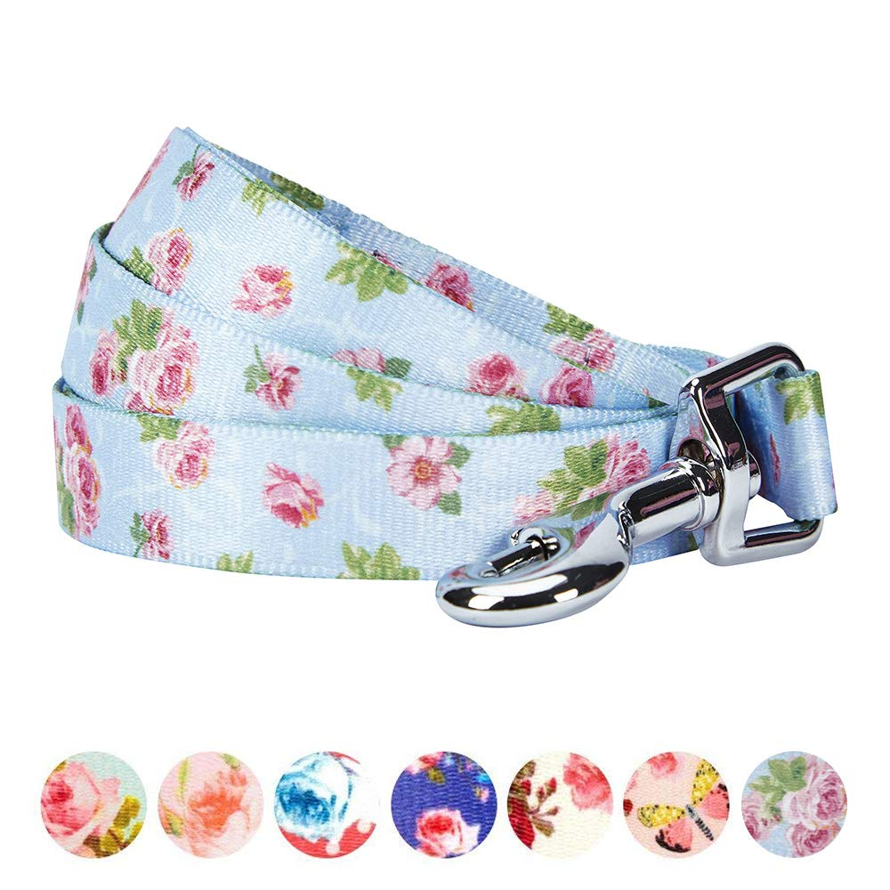 Blueberry Pet Durable Spring Scent Inspired Rose Blossom Floral Print Pastel Blue Dog Leash 5 ft x 5/8'', Small, Leashes for Dogs