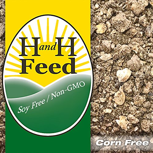 NON-GMO 28% GAMEBIRD w/Animal Protein 80# Soy-Free Corn-Free ALL Natural FREE SHP!! by H and H Feed, LLC