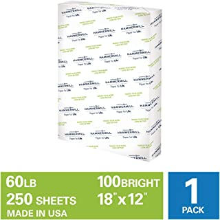product image for Hammermill Cardstock, 60 lb, 162 GSM, Premium Color Copy, 18 x 12-1 Pack (250 Sheets) - 100 Bright, Made In The USA Card Stock