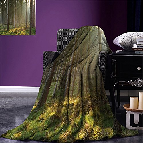 smallbeefly Forest Digital Printing Blanket Sunbeams Comes into Natural Misty Spruce Forest from the Right Top Picture Print Summer Quilt Comforter Tan and Brown - Sunbeam Tan Blanket