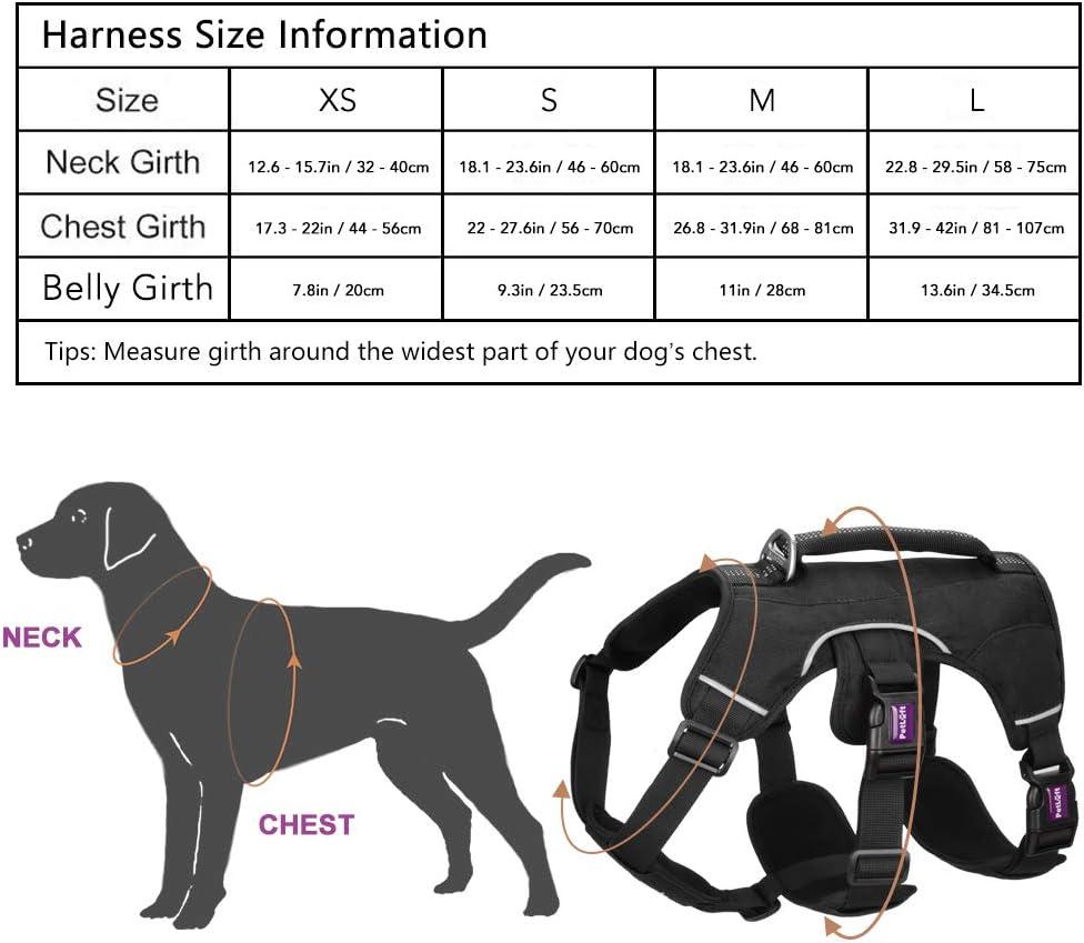 PETLOFT Harnais pour Chien S, Noir R/éfl/échissant R/églable Dog Harness Harnais Classiques Chien Anti Traction pour Petit Moyen Grand Chiens Harnais avec Anneaux en Acier Inoxydable