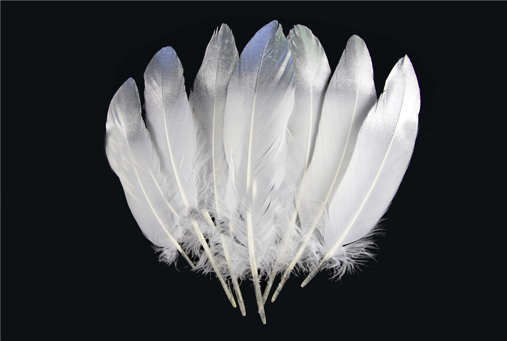 Insomnia Star 100 pcs Beautiful Natural Silver Pheasant Feather 15-20cm/6-8inch