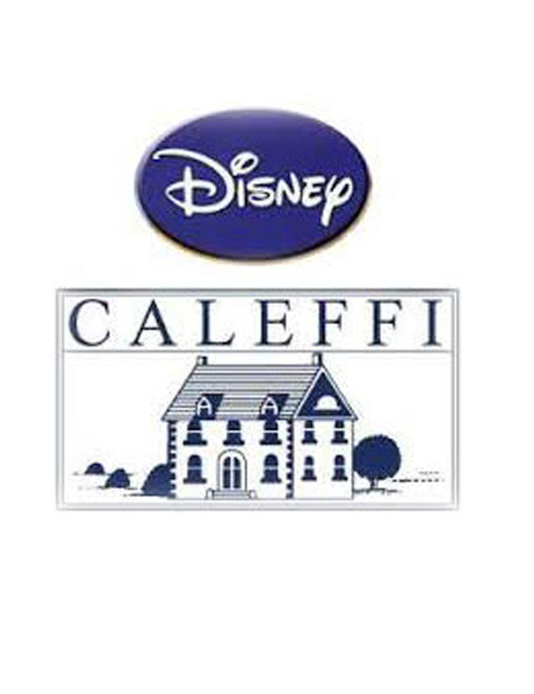 Disney Colcha de Invierno para Cama Individual Microfibra Minnie Patchwork de Caleffi