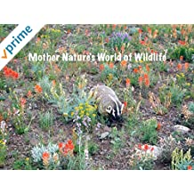 Mother Nature's World of Wildlife