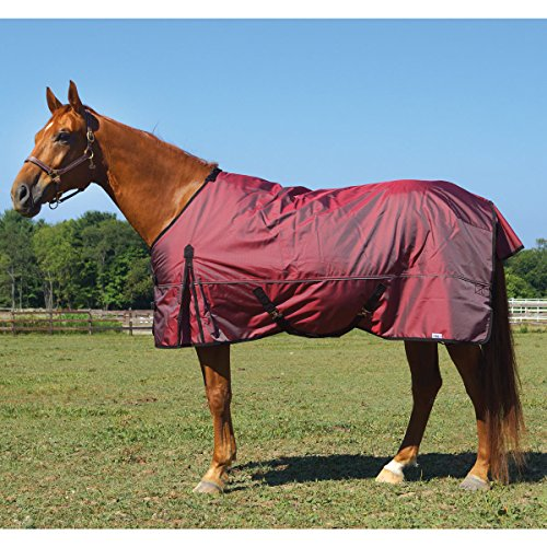 Midweight Turnout Horse (1680 Ballistic Nylon Midweight Turnout 72 in)