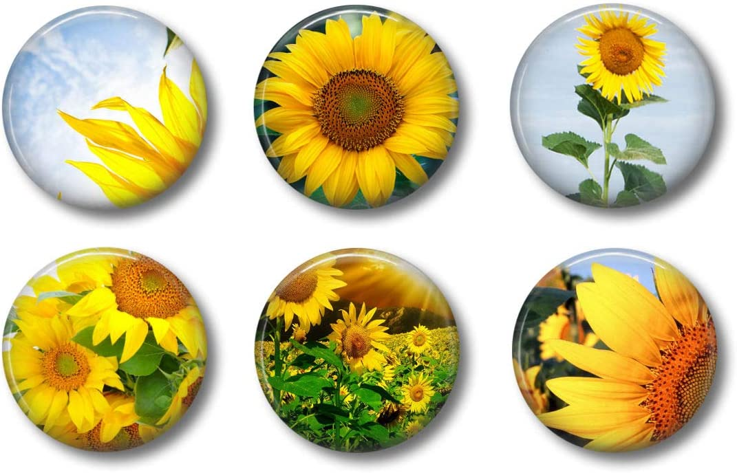 Wall art decoration set of 5 pieces PVC//Canvas Sunflowers field