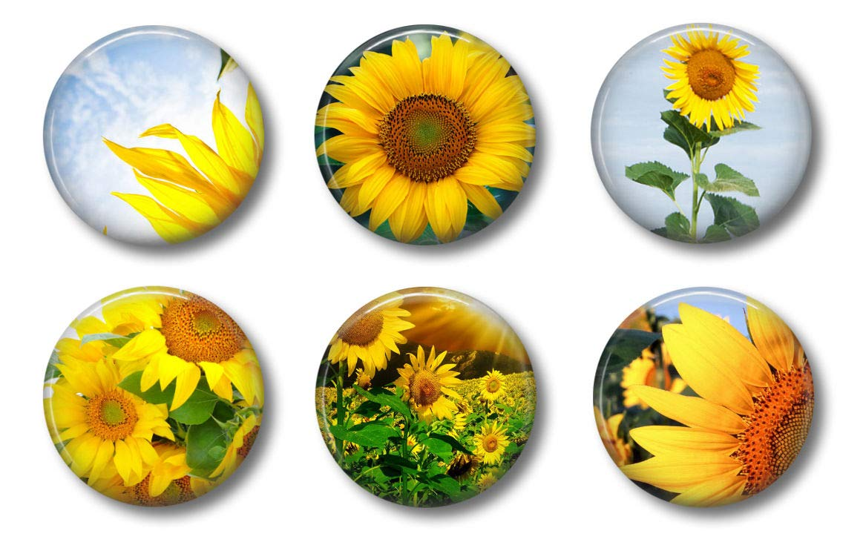 "Sunflower Magnets - Cute Locker Magnets For Teens - Set of Six 1.75"" - Whiteboard Office or Fridge - Gift Set (Sunflowers)"