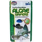 HIKARI ALGAE WAFERS 20g 40g 82g 250g 500g 1kg CATFISH PLECO WAFER (40g algae wafers)