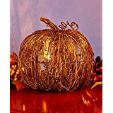 The Lakeside Collection Small Lighted Grapevine Pumpkin