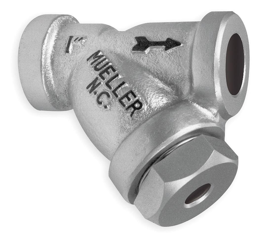 2 Socket Weld, Y Strainer 304 SS