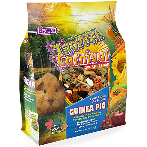 5 Lb Guinea Pig Food - F.M. Brown's Tropical Carnival Guinea Pig Food, 5-Pound