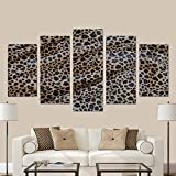 cheetah picture frame - InterestPrint Tiger Leopard Cheetah Pattern Modern Home Decor Stretched Canvas Wall Art Prints (No Frame) 5 Pieces